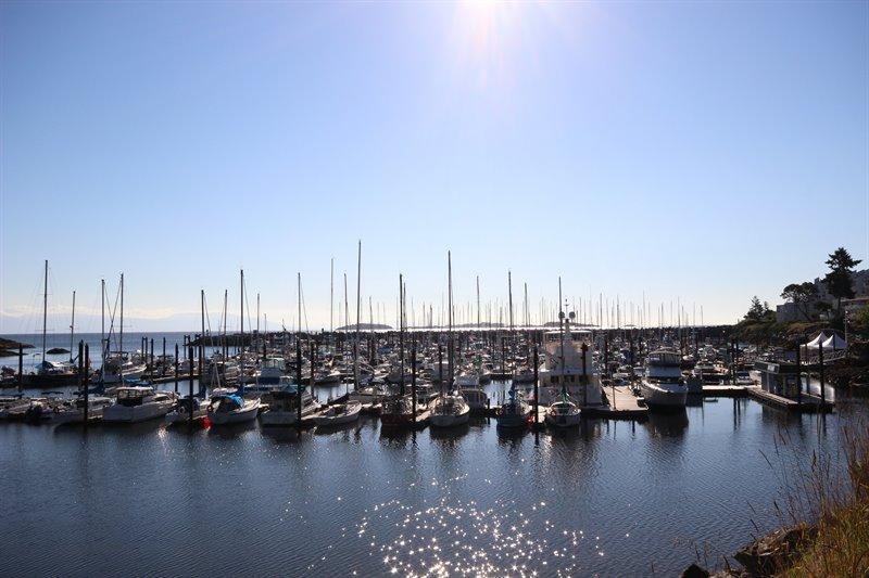 Schooner Cove Marina