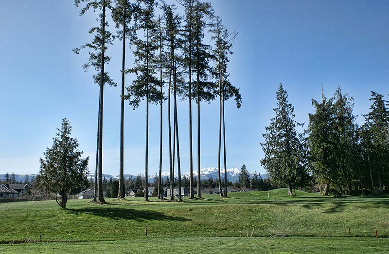 Minutes to Morningstar Golf Course